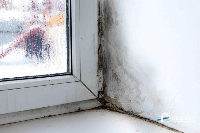 How to Prevent Mould Growth On Your Window Sills?